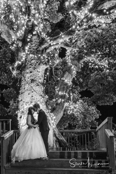 A kiss under a tree