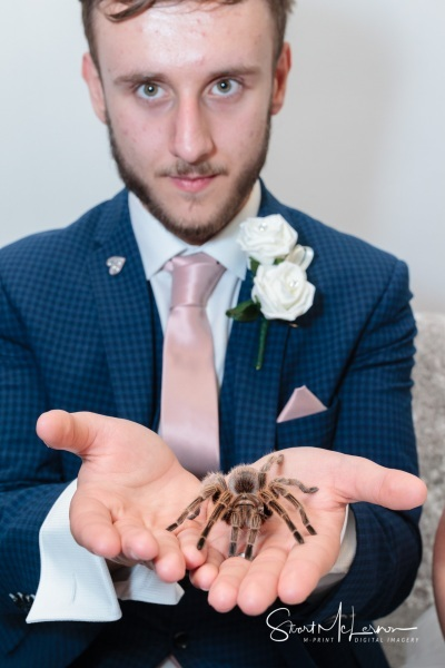 Groom with tarantula